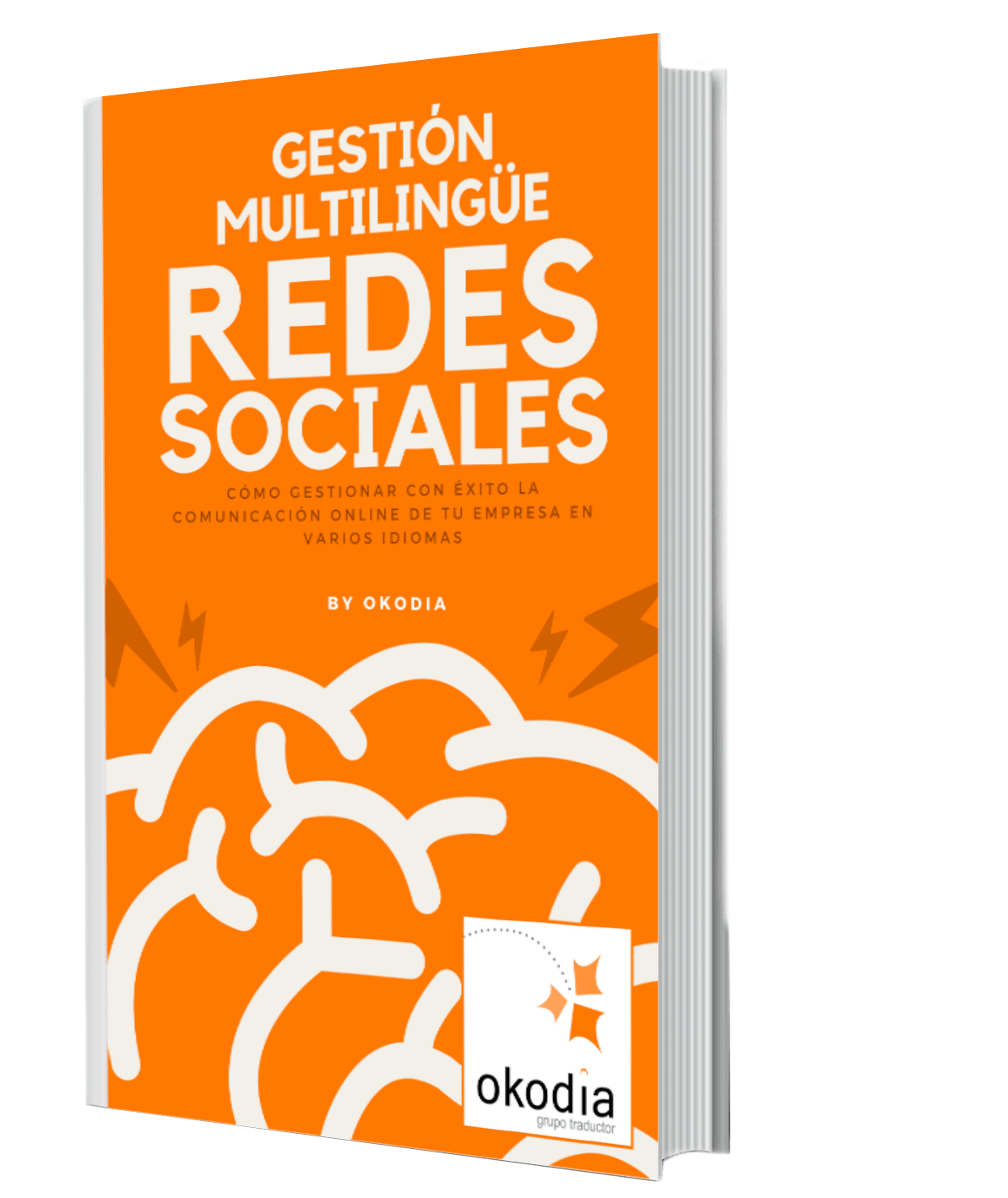 ebook5+plantilla